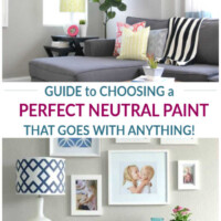 neutral paint that goes with everything