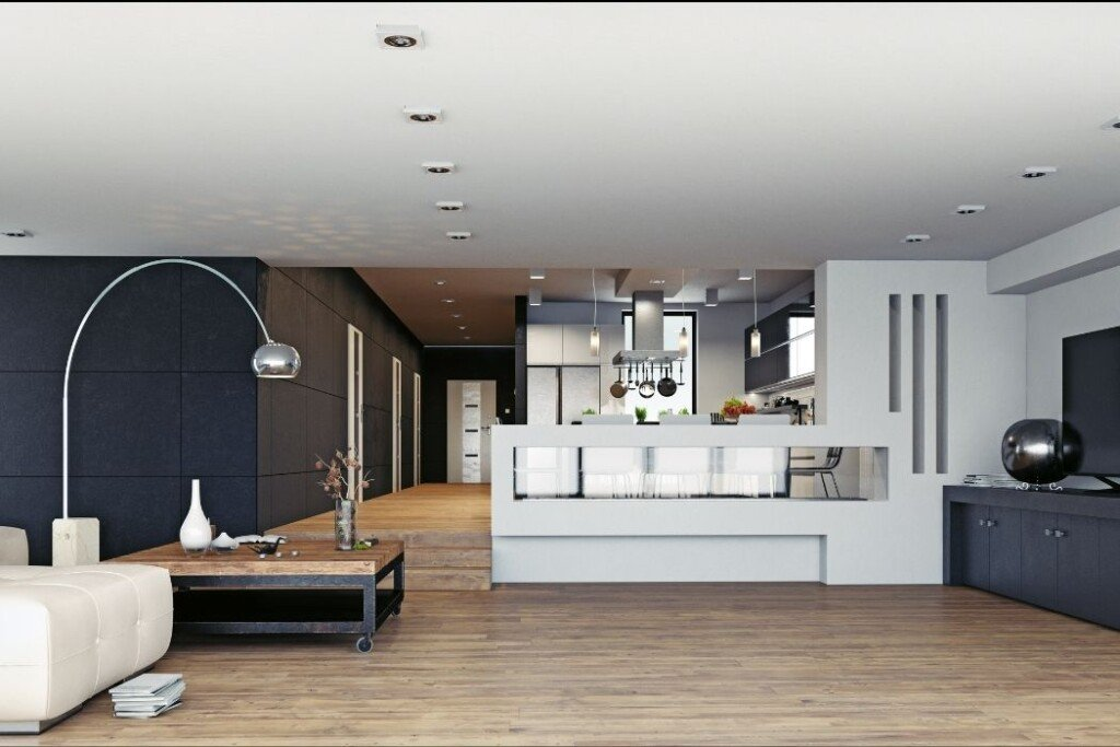 modern style interior with clean lines and contrasting color palette